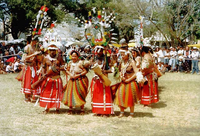 The Dance Woodlands Australian And Culture Traditions